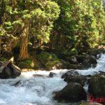 Река Уллу-Муруджу в Теберде - река из сказки