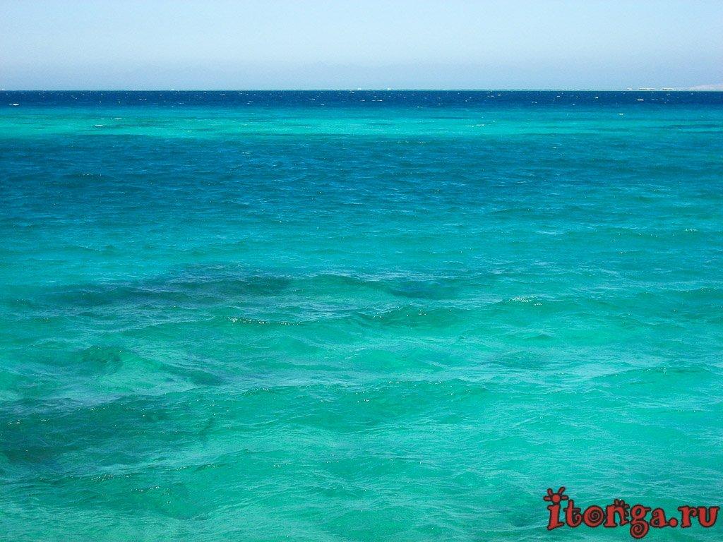 Египет, поездка, трип, отпуск