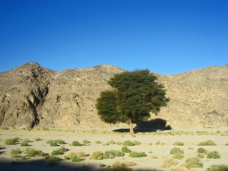 Аравийская пустыня, из Хургады в Луксор