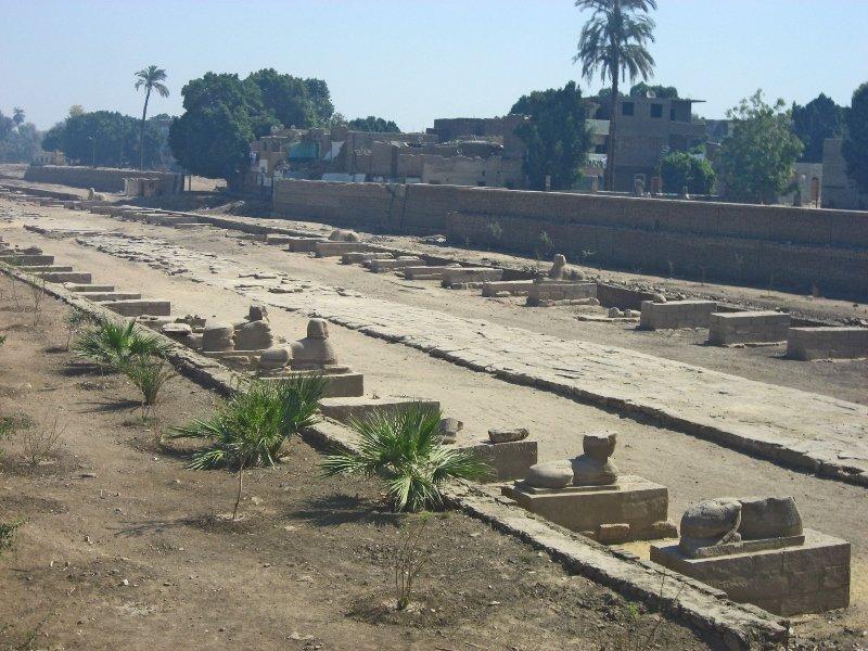 Египет, сфинксы, аллея сфинксов