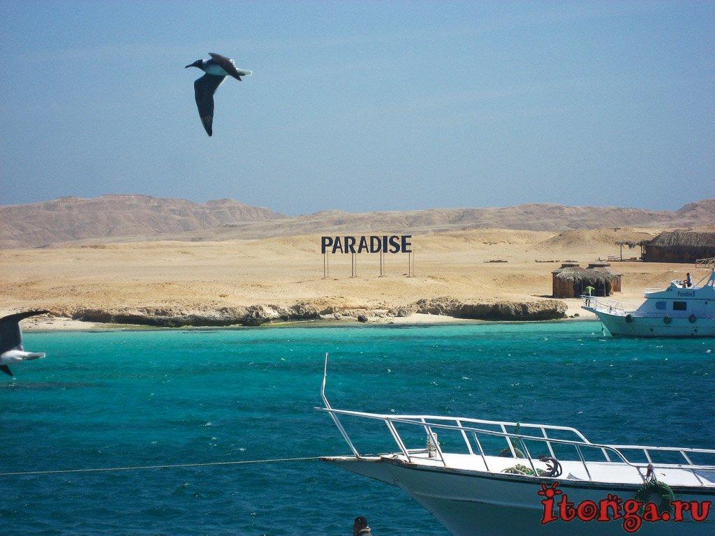 райский остров, Paradise, Хургада, Египет, Красное море