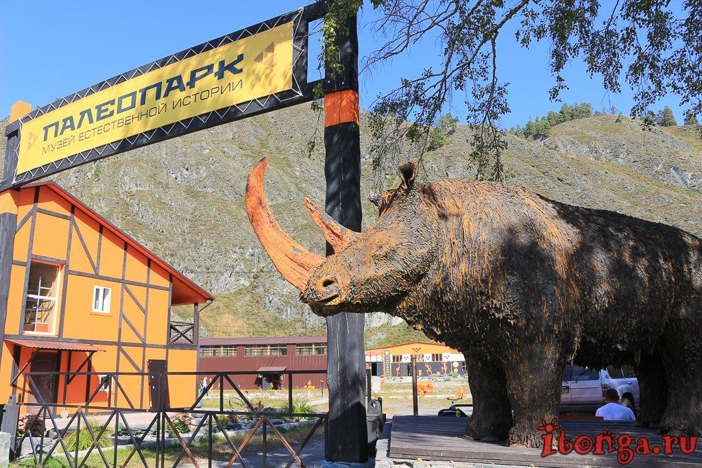 Палеопарк, музей, Горный Алтай,