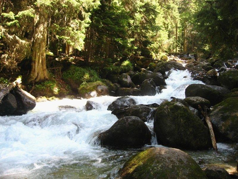 теберда, река муруджу, карачаево-черкесия, кавказ