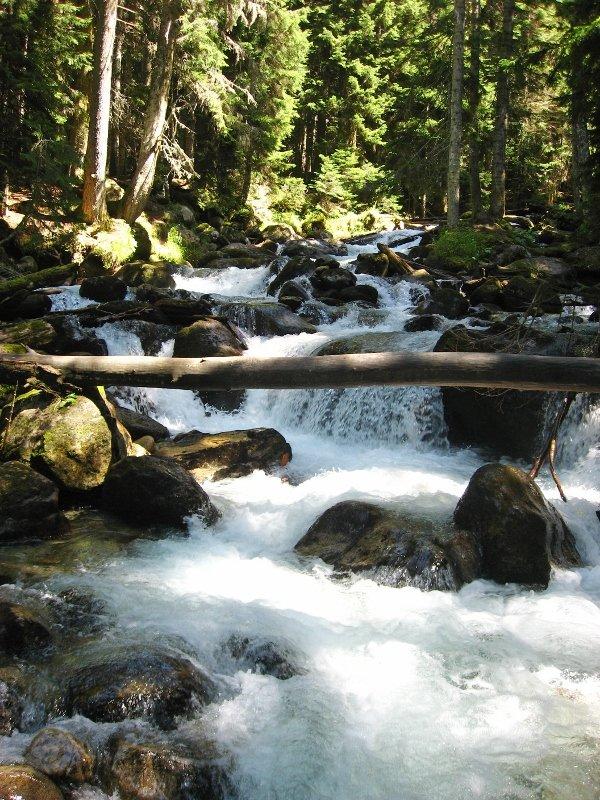 теберда, река уллу-муруджу, карачаево-черкесия, кавказ
