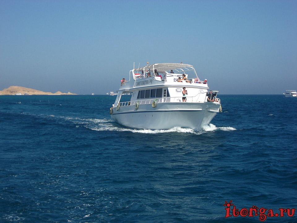 морские катера, моторные лодки, транспорт Египта, корабль, судно, море, яхта