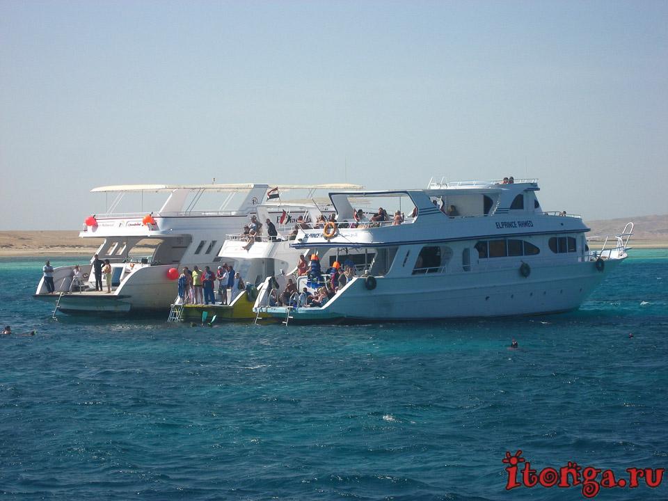 морские катера, моторные лодки, яхты, транспорт Египта, корабль, судно, море