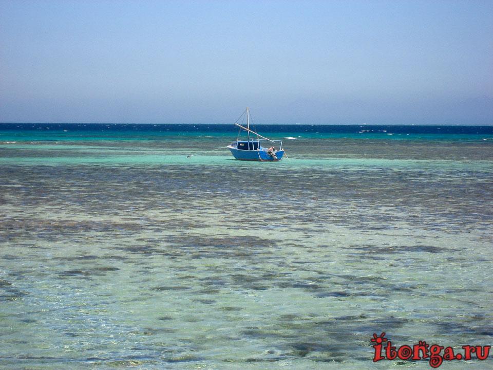 Морские катера, моторные лодки и яхты - водный транспорт Египта - Техника, Море - hurgada, egypt