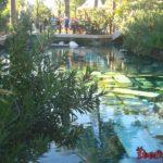 Бассейн Клеопатры в Памуккале - минеральные ванны египетской царицы