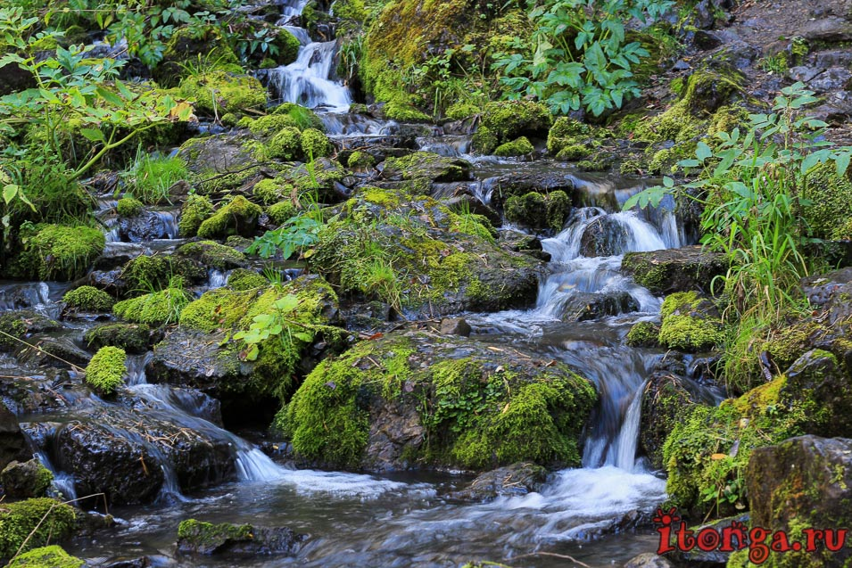 Фото природы Горного Алтая