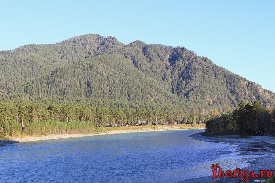 Где находится река Катунь,