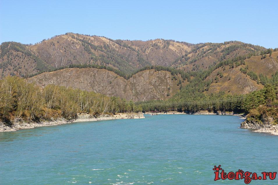 горная река Катунь, Алтай,