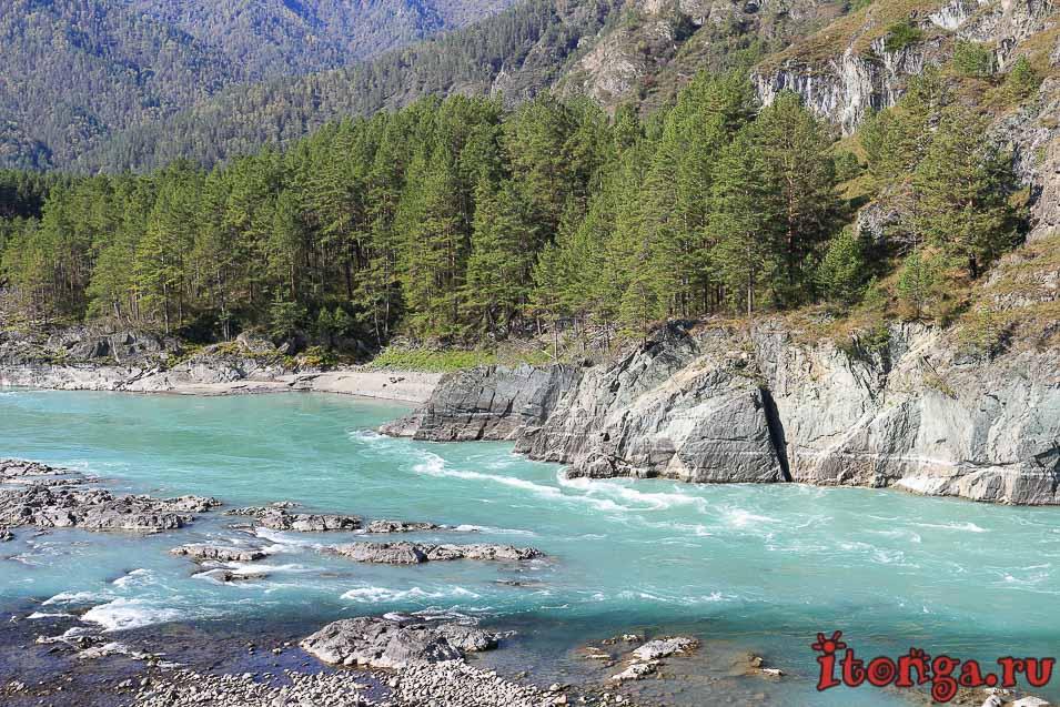 Горный Алтай, бирюзовая река Катунь, красивые фото,