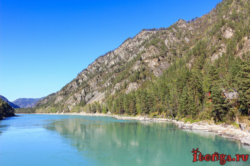 бирюзовая река Катунь, Горный Алтай,