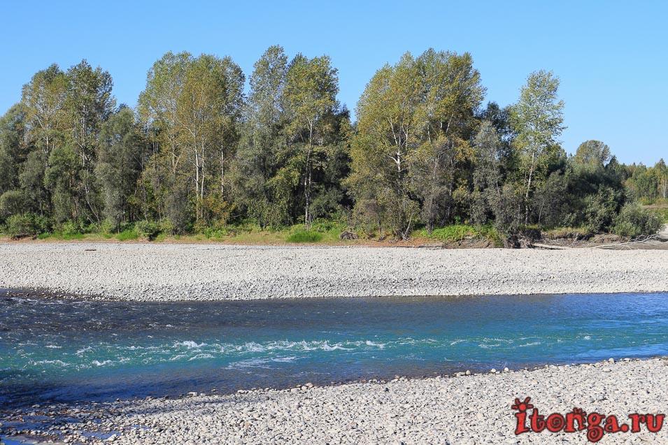 река Катунь, Алтайский край, бирюзовая река,