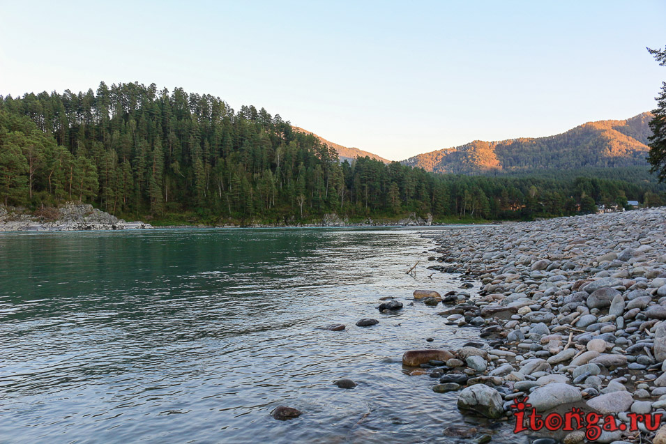 река Катунь Горный Алтай,что посмотреть на Алтае на машине,