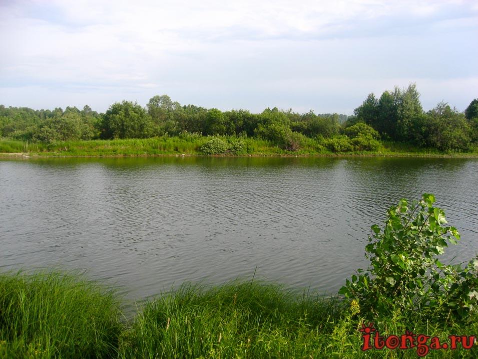 озеро Калтарак в Калтане, Кемеровская область, природа,