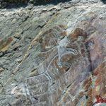 Наскальные рисунки древних людей Сибири