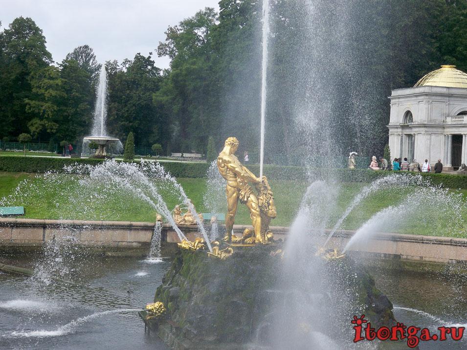 большой каскад, самсон, дворцово-парковый ансамбль петергоф
