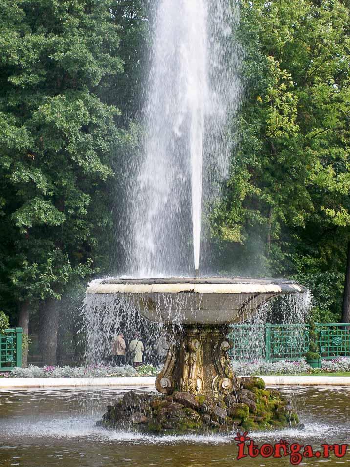 фонтан чаша, дворцово-парковый ансамбль петергоф