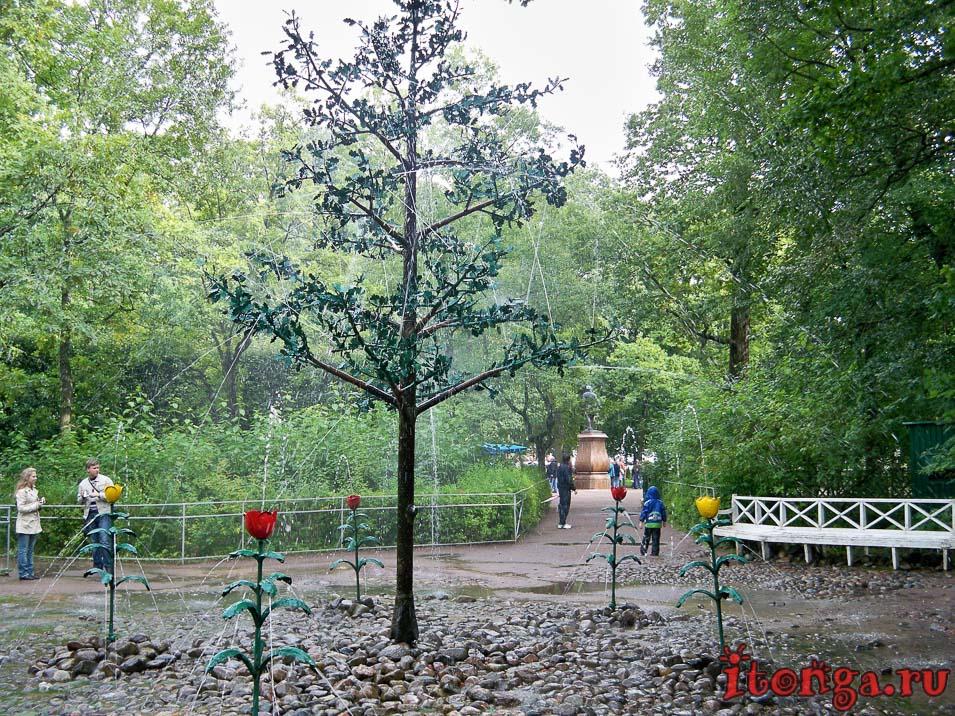 фонтан дубок, нижний парк, дворцово-парковый ансамбль петергоф