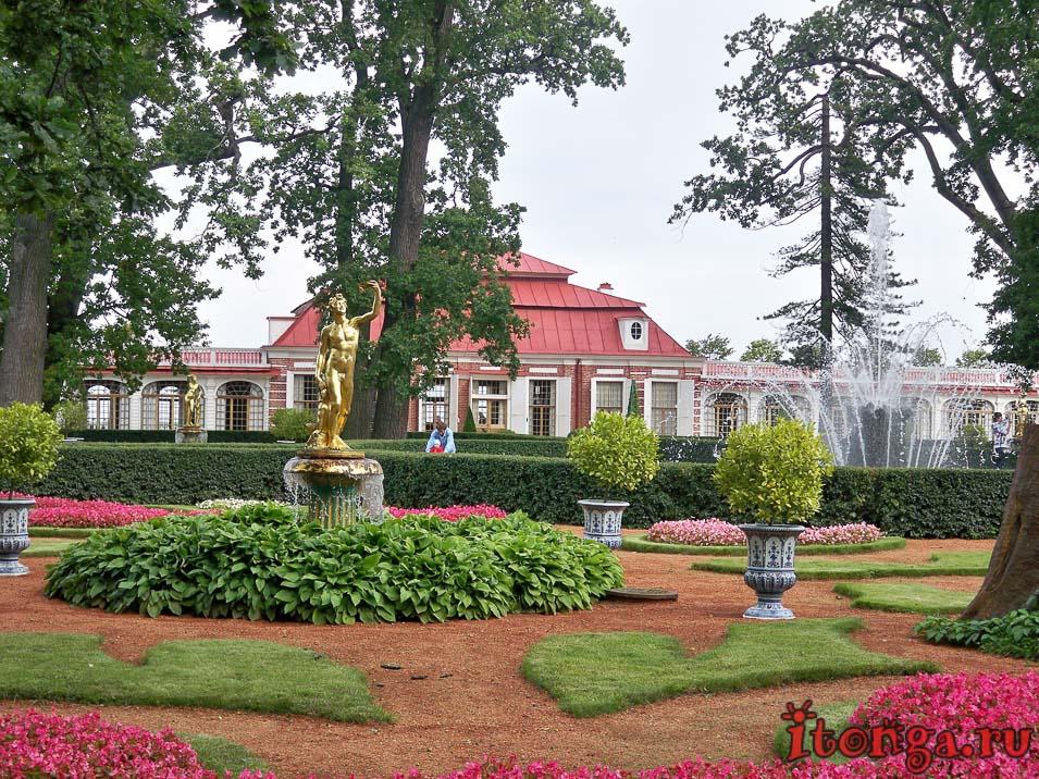 монплезир, дворец, дворцово-парковый ансамбль петергоф