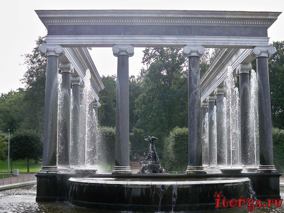 фонтан, львиный каскад, дворцово-парковый ансамбль петергоф