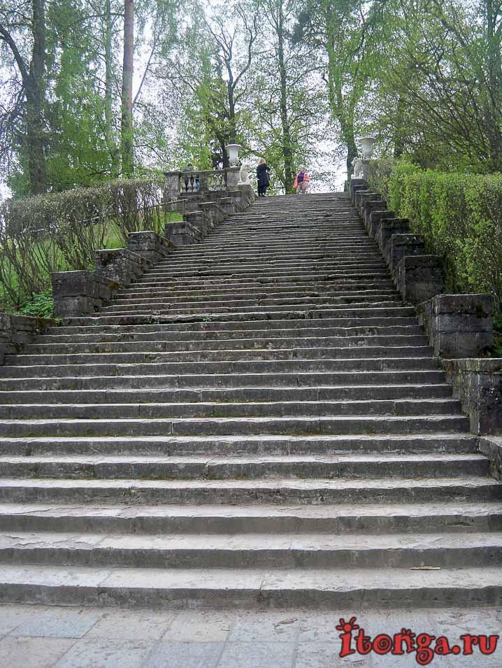 лестница, павловск, парк