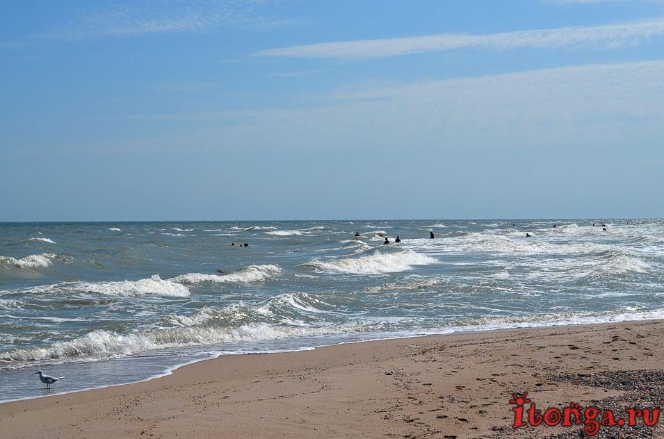 азовское море, пляж, лазурный