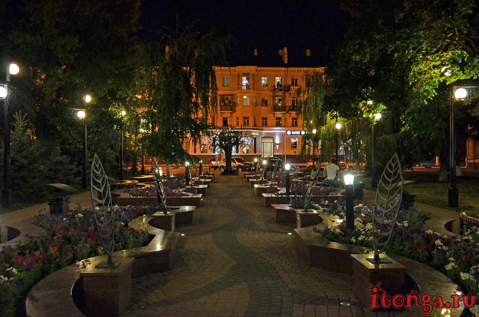 горсад, белгород ночью