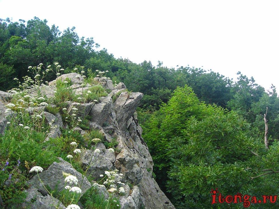 гора Железная, вершина, смотровая площадка