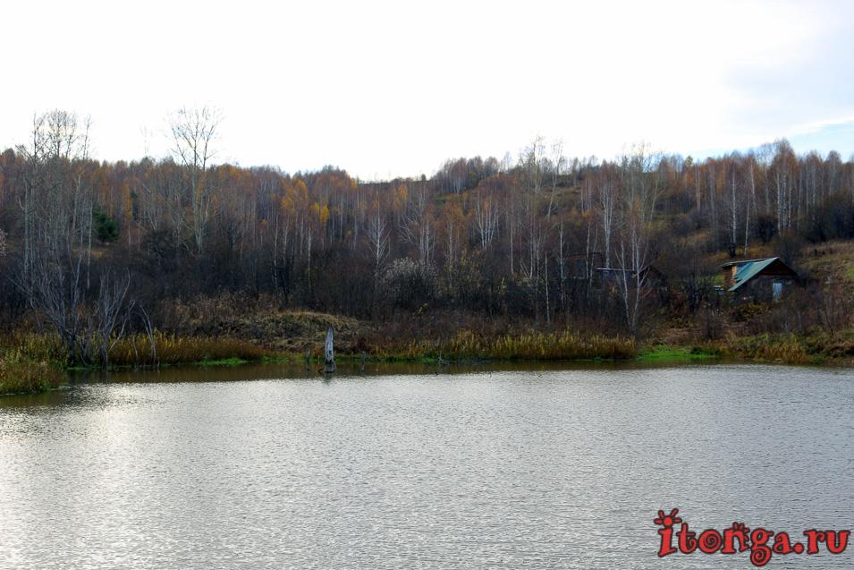 пейзажи сибири фото, осень, поселок мирный, осинники
