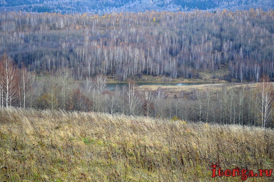 пейзажи сибири фото, поселок тайжина, осень