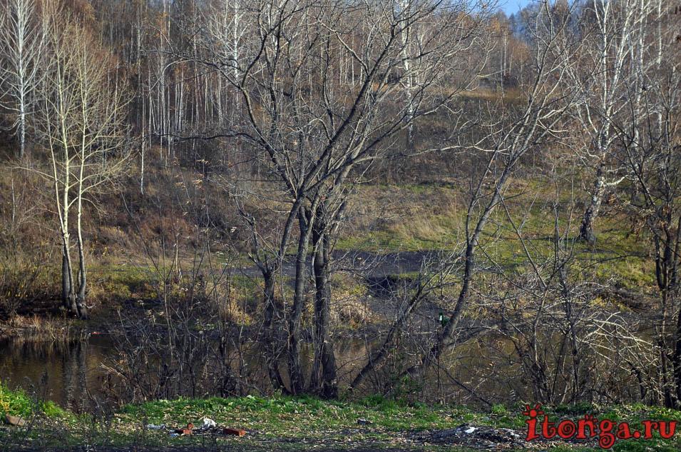 пейзажи сибири фото, осень, поселок тайжина, озеро