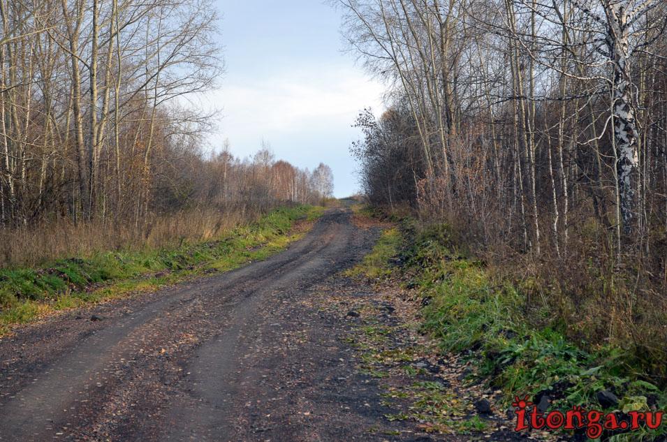 поселок тайжина, осень, сибирь, фото