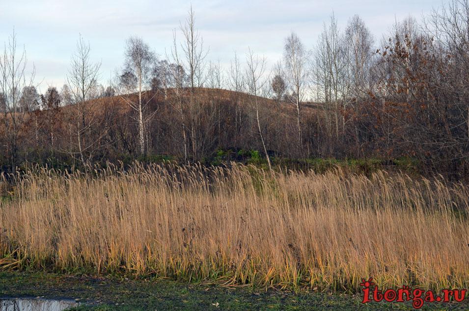пейзажи сибири фото, осень, поселок тайжина