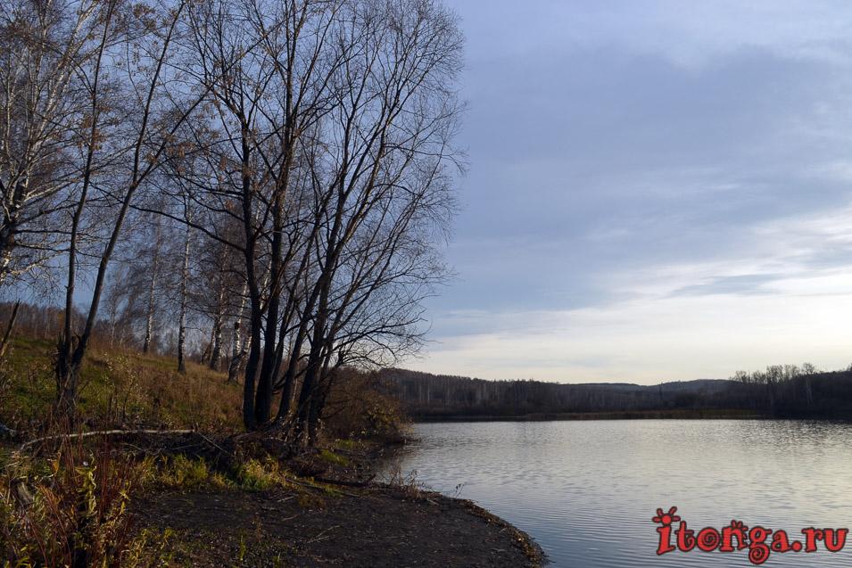 поселок тайжина осинники, сибирь, осень, озеро