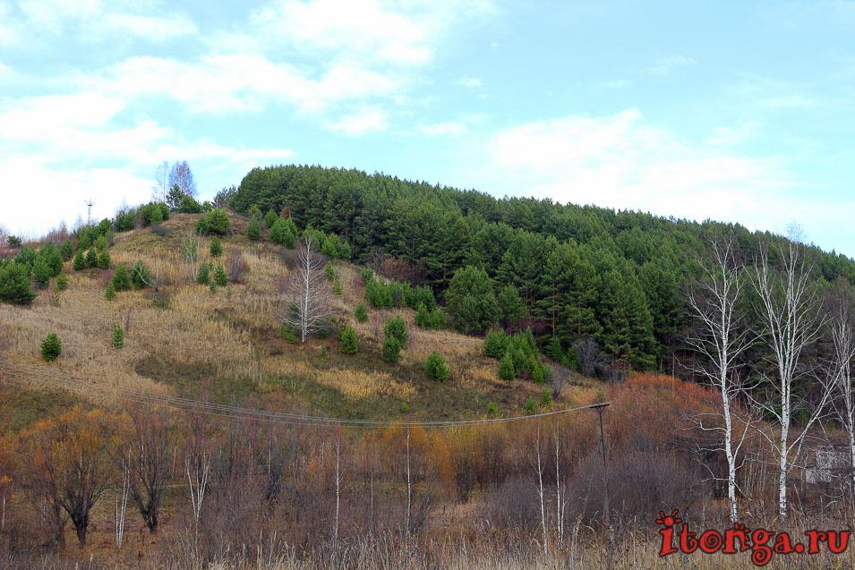 поселок мирный, осинники, фото, осень