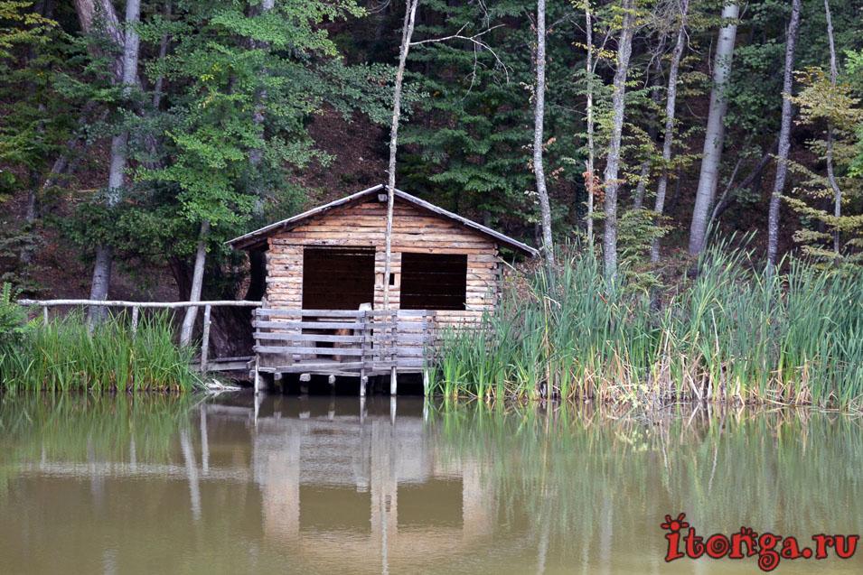 крым, ялта, черепашье озеро