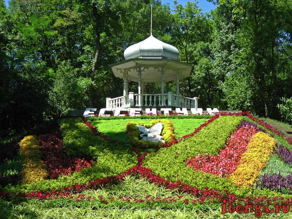 Ессентуки, цветочный календарь, курортный парк, беседка